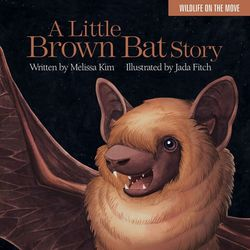 Little_brown_bat_story_Islandport_Press
