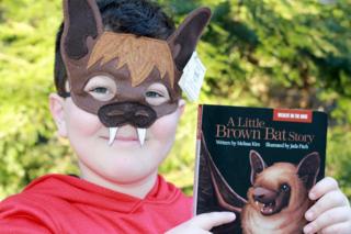 Bat-model